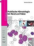 ISBN 3877067166