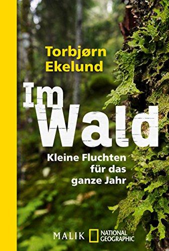 Im Wald: Kleine Fluchten für das ganze Jahr