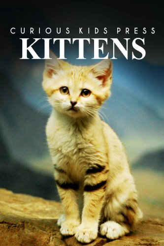 Kittens - Curious Kids Press