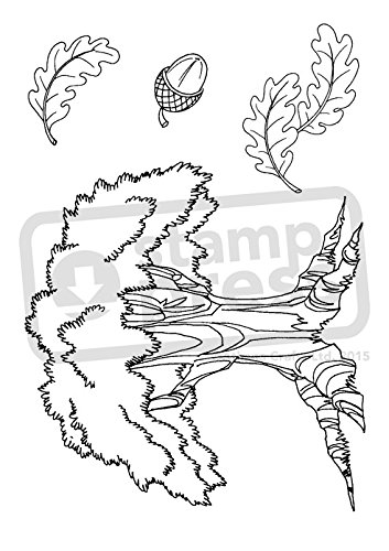a7-old-oak-tree-unmounted-rubber-stamp-sp00003906