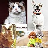 Hund Katze Puppy Pet Auto Sitzerhöhung Travel Tasche Käfig Decke Wasserdicht Atmungsaktiv Pet Auto Sicherheitsgurt Bezug Booster Tasche Matte PET Reisen Auto Kissen - 7