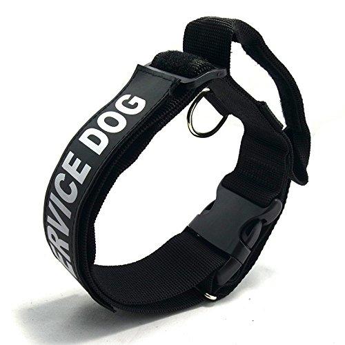 entirement-chien-puppy-traning-collier-trangleur-avec-poigne-collier-ajustable-avec-boucle-de-sangle