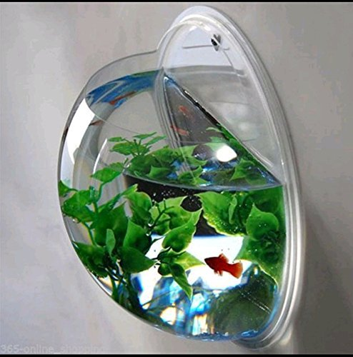 Creative Acrylic Hanging Wall Mount Fish Tank Bowl Vase Aquarium Plant Pot...