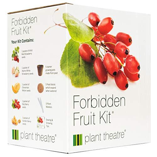 Kit Verbotene Früchte von Plant Theatre - 5 Köstliche Früchte wachsen - Ein tolles Geschenk - Verbotene Süße Früchte