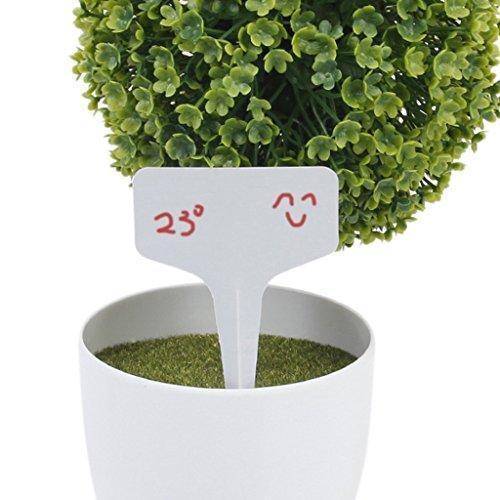 Etiquetas para horticultura - SODIAL(R) 100 piezas 10x6cm etiquetas de signos de tipo T de plantas de arbol(blanco)