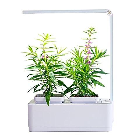 Air garden harvest and food herbal seed bag suit machine de croissance de plantes d'eau arrosage automatique arrosage paresseux pot intérieur de fleurs Taille 260 * 210 * 107mm