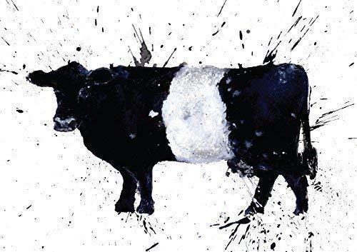 Mit Gürtel Galloway oder Kuh Grußkarte/Karte, aus einem Originalgemälde von Clare Brownlow. gedruckt auf hochwertigem Künstler Karte Briefumschlag im Lieferumfang enthalten. blanko auf der Innenseite für jede Nachricht. - Grußkarten Kuh