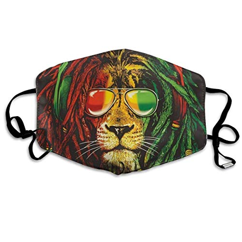 Erwachsene, Mask Face, Mouth Mask, Breathable Mask Anti Dust, Adjustable Mouth Masks for Dust, Unisex Colorful Lion Windproof Face Mask Filters Flu Germs for Men Women ()