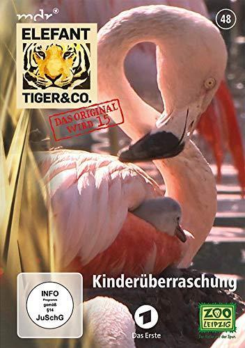 Elefant, Tiger & Co. - Teil 48: Kinderüberraschung