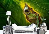 Papel Tapiz Fotomural - Hoja Venas Grieta Rana Ojo Macro - Tema Animales - L - 254cm x 184cm...