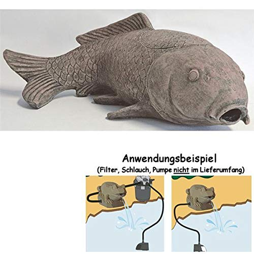 SuperFish Deco-Filter Karpfen