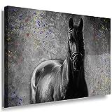 Julia-art Leinwandbilder - Schwarzes Pferd Bild 1 teilig - 70 mal 50 cm Leinwand auf Rahmen - sofort aufhängbar ! Wandbild XXL - Kunstdrucke QN.170-3