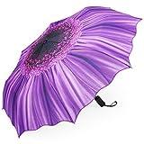 Plemo Regenschirm, Automatik Taschenschirm Violett Daisy Blumen-Motiv (94 cm Durchmesser)