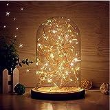 LEDMOMO LED lampada barattolo con Illuminazione ocn Campana di Vetro Luce stringa in bottiglia per la decorazione di comodino/natale/festa/casa/camera da letto (luce calda)