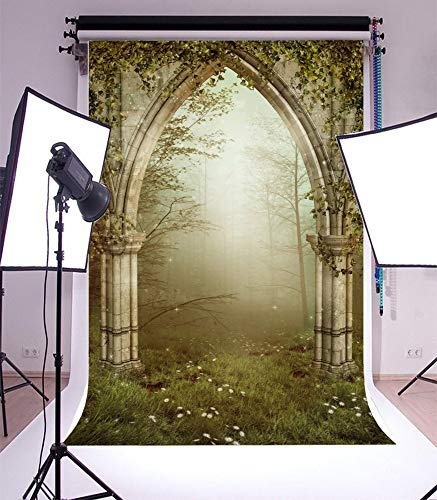 vrupi Vinyl 5x7ft Photography Background Old Gothic Ruins with Ivy Fairytale Enchanted Garden Forest Arch Fog Grassland Theme Backdrops Portraits Shooting Video Studio Props 1.5x2.2m (Arch Prop)