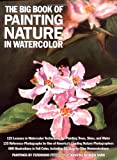 The Big Book of Painting Nature in Watercolour (Practical Art Books)