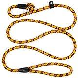 Zhichengbosi Einstellbare Hundeleine Nylon Training Blei Leine Langlebig, Weich Für Hunde 10-80 lbs (Gelb)
