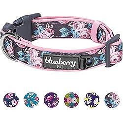 Blueberry Pet Gepolstertes Hundehalsband mit 6 Mustern, weich und bequem, mit Frühlingsrosen, für Kleine Hunde, Halsumfang: 30,5-40,6 cm, Verstellbare Halsbänder für Hunde