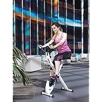 Preisvergleich für ION Fitness TRON FI012 klappbarer heimtrainer- magnetisches bremssystem - 8 kg schwungmasse - transporträder