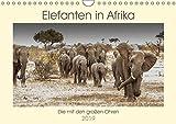 Elefanten in Afrika - Die mit den großen Ohren (Wandkalender 2019 DIN A4 quer): Imponierende Geschöpfe mit ausgeprägtem Familiensinn (Monatskalender, 14 Seiten ) (CALVENDO Tiere)