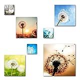 Pusteblumen Bilder Set, 7-teiliges Bilder-Set, Moderne seidenmatte Optik auf Forex, frei positionierbare schwebende Anbringung, UV-stabil, wasserfest, Kunstdruck für Büro, Wohnzimmer, XXL Deko Bilder