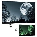 Wandbilder Startoshop, nachleuchtende Leinwandbilder Oder Selbstklebende Fototapete, Mond im Wald Wanddeko, 80 cm x 120 cm