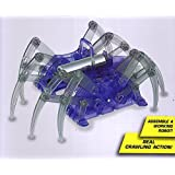 DIY Spiderbot, Create and Build a Crawling Action Spider. by DIY