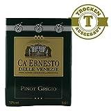 Weißwein Bag in Box Pinot Grigio 5,0 Liter