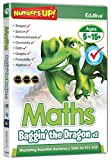 Maths Baggin' The Dragon V2 (PC/Mac)