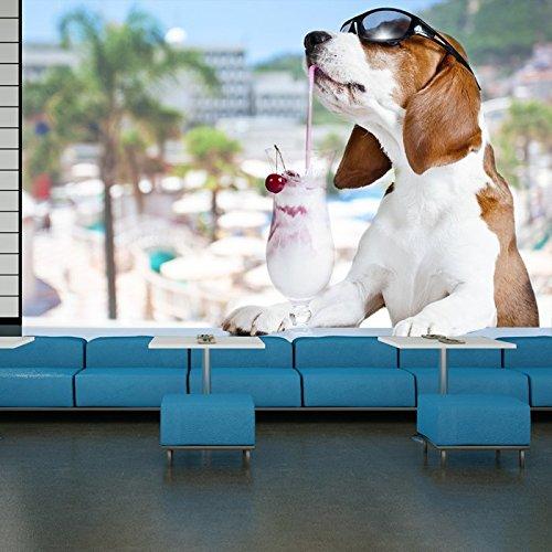 Beagle cane in occhiali da sole con cocktail di Animals Wallpaper parete Commedia Foto disponibile in 8 taglie XX-Large Digitale