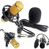 Mikrofon COLORFUL BM-800 Professionelles Studio Radio & Aufnahme Kondensator-Mikrofon Kit (Schwarz)