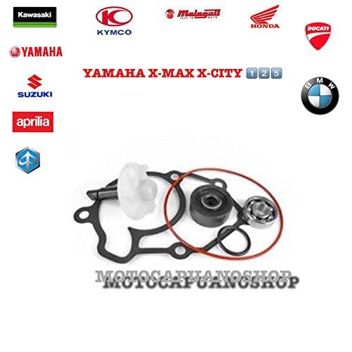 Kit Mantenimiento Bomba Agua Audio Yamaha X-Max 125X-City 125
