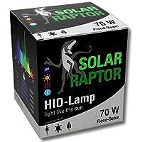 Econ Lux SolarRaptor 70W PAR38HID de Flood–Foco