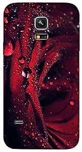 Timpax protective Armor Hard Bumper Back Case Cover. Multicolor printed on 3 Dimensional case with latest & finest graphic design art. Compatible with Samsung Galaxy S-5-Mini Design No : TDZ-24549