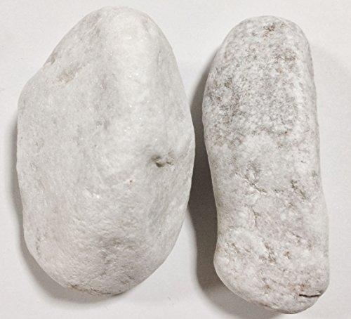 Kieselsteine Zierfische Farbe Weiß 8–12cm/5kg Boden Aquarium Teich Garten