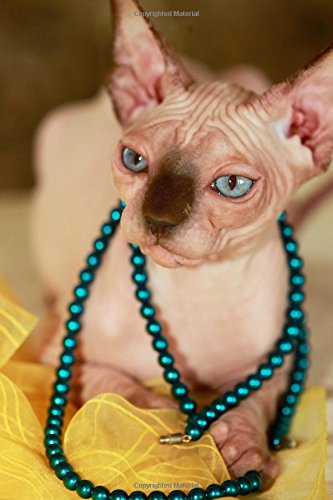 Styling Hairless Sphynx Kitty Wearing a Necklace Journal: 150 Page Lined Notebook/Diary -