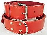 Lusy011 Hunde Halsband - Echt Leder - ROT, Halsumfang 50-65cm; 59-74cm (59-74cm/50mm/90cm)