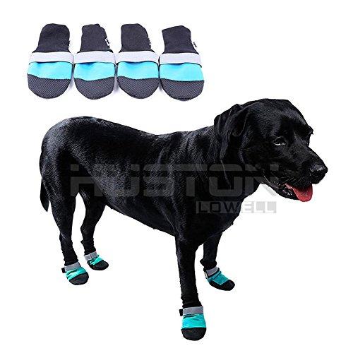 Aution House - 4 Pcs Antideslizante Impermeables Ligeros Zapatos de Perros - Calidad Durable - Protector Patas - Botas de Perro para La Lluvia , la Nieve , el Frío y el Calor (M Azul)