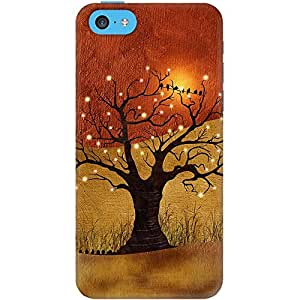 DailyObjects Sunset And Lights Case For iPhone 5C