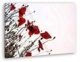 deyoli Roter Mohn Format: 120x80 Effekt: Zeichnung als Leinwand, Motiv fertig gerahmt auf Echtholzrahmen, Hochwertiger Digitaldruck mit Rahmen, Kein Poster oder Plakat