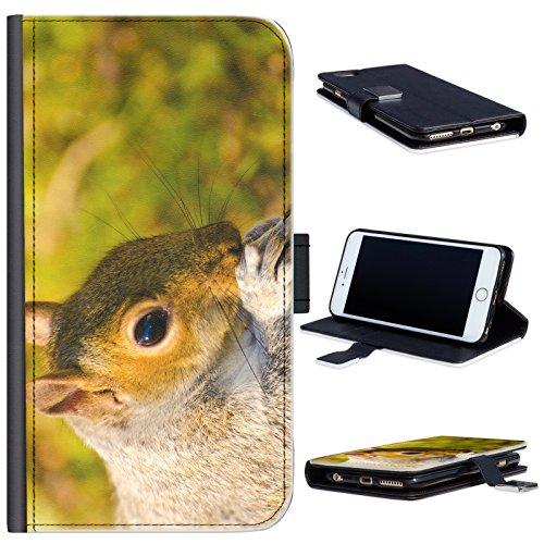 Hairyworm - BG0184 Graues Eichhörnchen mit Nuss HTC 10 evo, HTC Bolt Leder Klapphülle Etui Handy Tasche, Deckel mit Kartenfächern, Geldscheinfach und Magnetverschluss. HTC 10 evo Fall (Evo Nüsse)