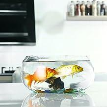 Jiangu - pecera de cristal circular transparente y creativa, mini acuario de oficina, recipiente