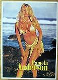 Pamela Anderson Poster Nr. 2 Format 62 x 86 cm Erotik -