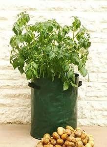 Sac pour faire pousser des pommes de terre - résistant - pour terrasse/balcon