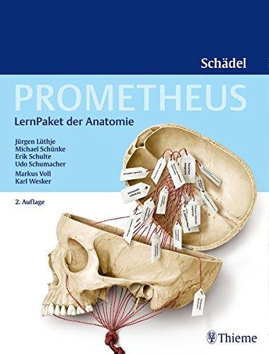 PROMETHEUS LernPaket Anatomie Schädel
