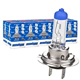 10x H7 12V 55W PX26d Premium Halogen Lampen Autolampe Xenohype Scheinwerfer Lampe Ersatzlampen Abblendlicht Fernlicht Nebellicht