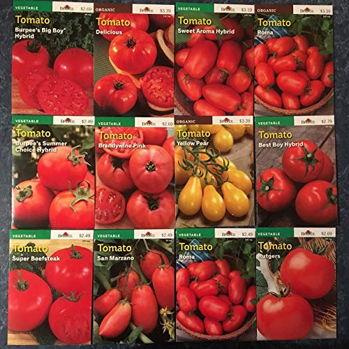 Preisvergleich Produktbild AGROBITS Brandy Pink: Jetzt 50% New 2018 / 19 Pee Tomatensamen 12 Sorten Incl. 3 Organic