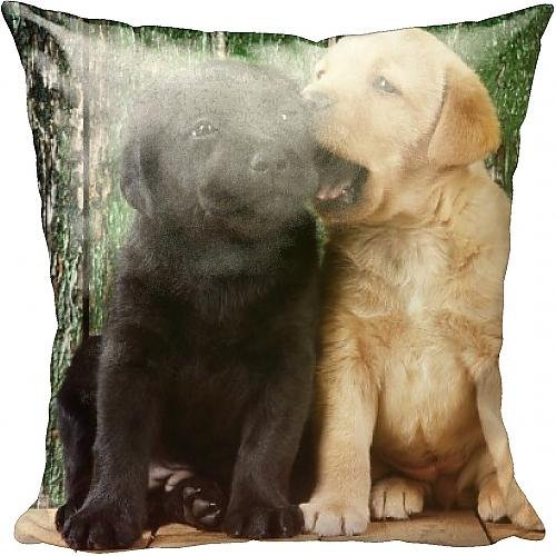 cushion-of-black-a-yellow-labrador-dog-puppies-by-barn-door