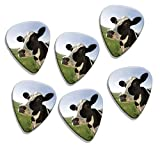 Pack of 6 loose guitar picks featuring the design shown. The picks are real, useable guitar picks in medium gauge.The premium quality celluloid picks are printed using the latest digital printing techniques making the vibrant print very durable.The p...