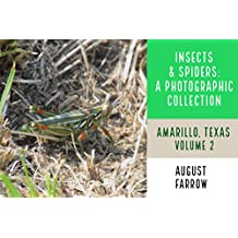 Insects & Arachnids: A Photographic Collection: Amarillo, Texas: United States - Volume 2 (Arthropods of Amarillo) (English Edition)